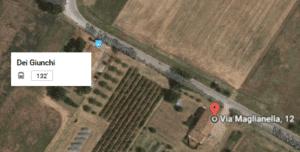 lenticchia-fermata-bus